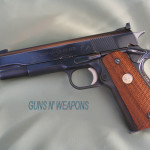 Colt ACE